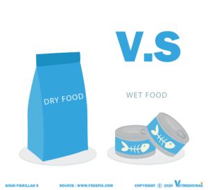 makanan kucing basah vs kering bagus mana