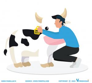berbagai metode identifikasi ternak