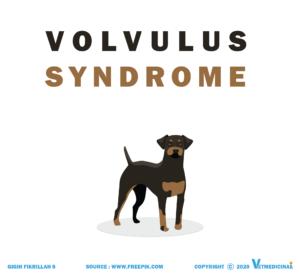 volvulus syndrome pada anjing